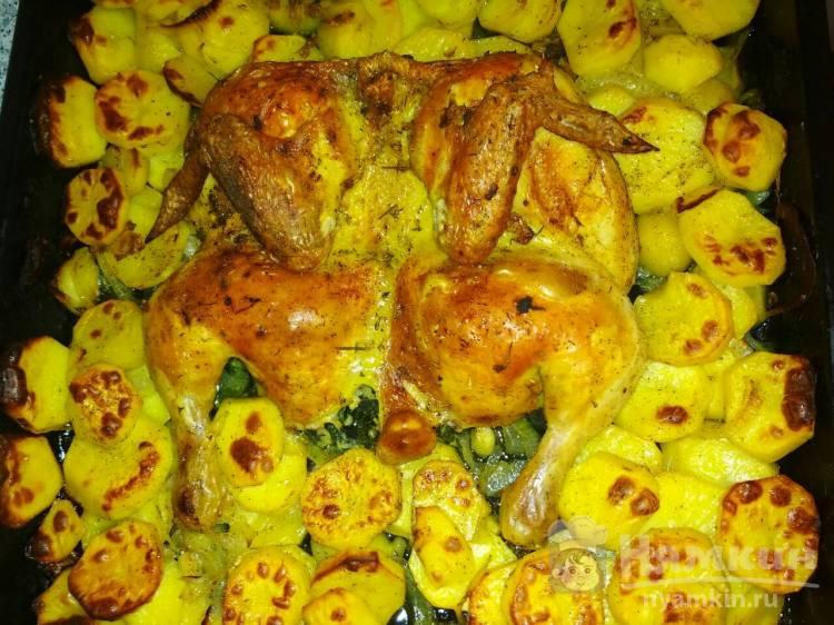 Курица запеченная с травами, чесноком и картофелем