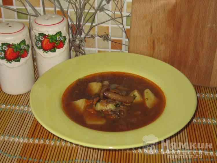 Постный суп из чечевицы с опятами