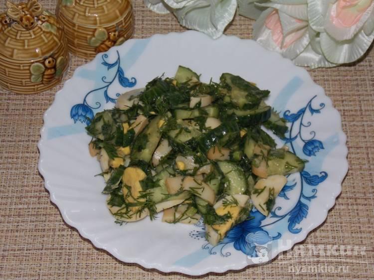 Вкусный салат из зелени и копченого кальмара