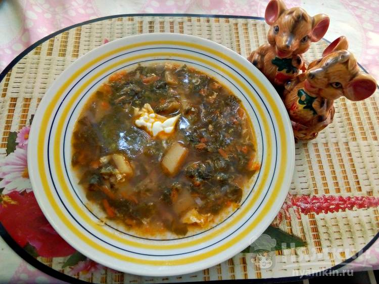 рецепт борща со щавелем с фото пошагово далматинцев