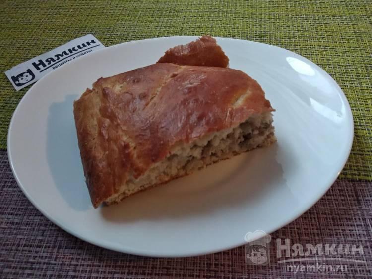 Дрожжевой пирог с мясным фаршем и сыром в духовке