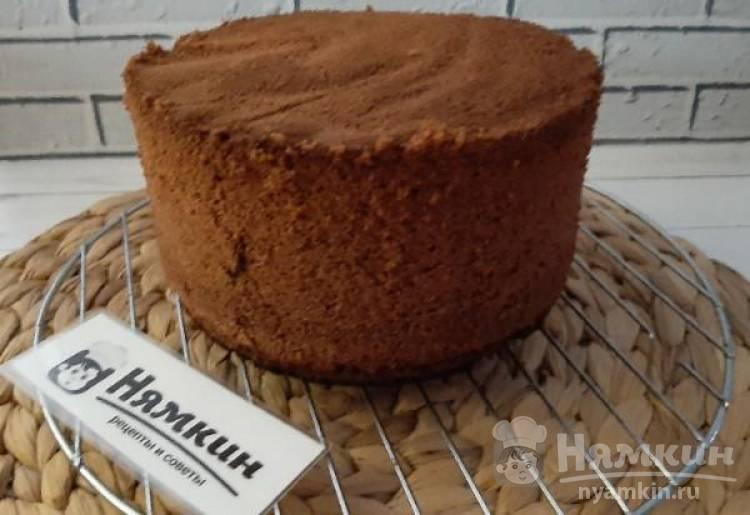Шоколадный бисквит на желтках для тортов и пирожных